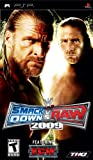 WWE SmackDown vs. Raw 2009 - Sony PSP