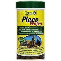 Tetra 151239 Pleco