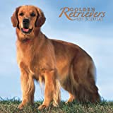 Golden Retrievers 2007 Calendar (1421607158) by Browntrout Publishers