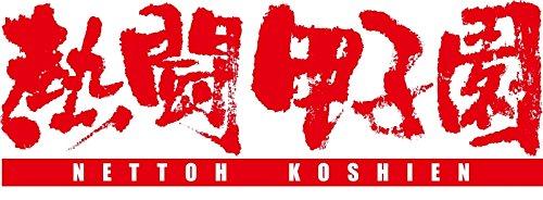 熱闘甲子園2015 [DVD]