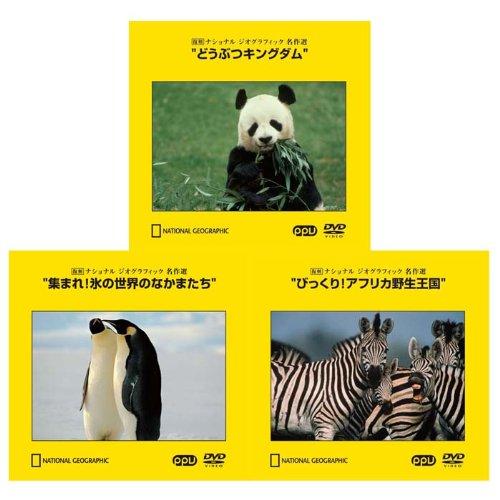 ナショナルジオグラフィック動物スタンダードセット DVD3枚セット どうぶつキングダム/集まれ!氷の世界のなかまたち/びっくり!アフリカ野生王国(PPV-DVD)
