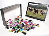 Photo Jigsaw Puzzle of Quarter / Paint H...