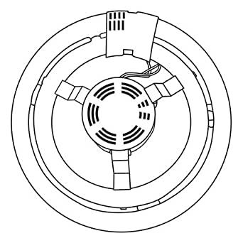 TCP 17058L - 58 Watt Circline Fluorescent Light Bulb and Ballast / 200 Watt Incandescent Equivalent / Medium base (Standard light bulb base)
