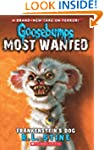Goosebumps Most Wanted #4: Frankenste...