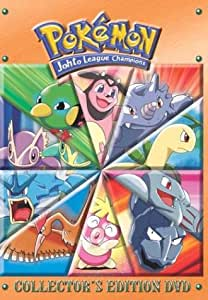 Pokemon: V.7 Journey's End