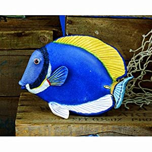 Museum Quality Powder Blue Tang Tropical Fish Statue, 8""
