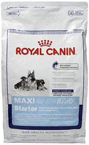 Milk Formula For Puppies