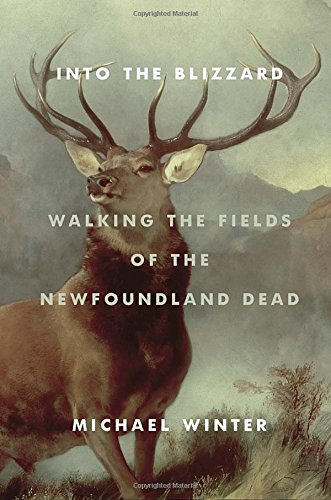 Into the Blizzard: Walking the Fields of the Newfoundland Dead PDF
