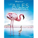 Les ailes pourpres : Le myst�re des flamantspar Frank C�zilly