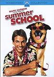 Summer School (Bilingual)