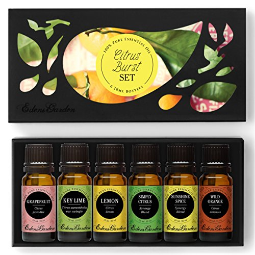 CITRUS BURST 100% Pure Therapeutic Grade Essential Oil Set/ Kit by Edens Garden- (Grapefruit, Key Lime, Lemon, Simply Citrus, Sunshine Spice, Wild Orange)- 6/ 10 ml