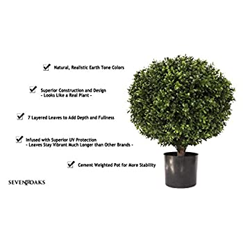 LIMITED TIME LOW PRICE FOR FIRST TIME ON AMAZON |