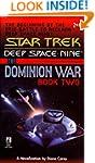 Star Trek: The Dominion Wars: Book 2:...