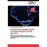 Canales de potasio KATP en hipocampo de ratas jóvenes: KATPs y su posible participación como neuroprotector durante...