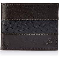 Fastrack Brown and Navy Blue Men's Wallet (C0377LBR01)