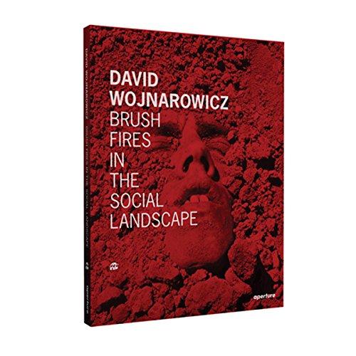 David Wojnarowicz brush fires in the social landscape