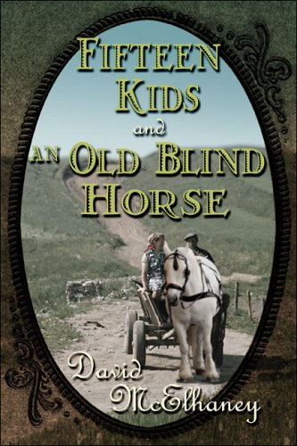 Fifteen Kids and An Old Blind Horse