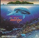 Summer In Paradise - The Beach Boys