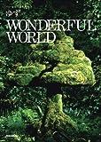ハーモニカ&ギター ゆず/WONDERFUL WORLD (ハーモニカ&ギター)