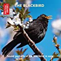 The Blackbird: Sound Portraits of the Blackbird in Song Audiobook by Cheryl Tipp Narrated by Fiona McCarthy