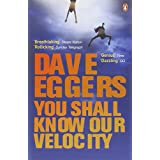 You Shall Know Our Velocityby Dave Eggers