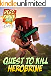 Minecraft: Diary of the Quest to Kill...