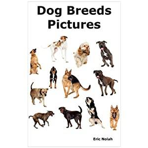 Dog Breeds Pictures: Over 100 Breeds Including Chihuahua, Pug, Bulldog
