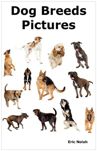 Dog Breeds Pictures: Over 100 Breeds Including Chihuahua, Pug, Bulldog, German Shepherd, Maltese, Beagle, Rottweiler, Dachshund, Golden Retriever, Pomeranian, Doberman Pinscher, Terrier and Boxer.