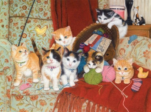 MINI - Knitting for Cats - 1