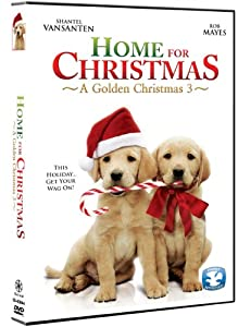 Home For Christmas: A Golden Christmas 3 from Marvista