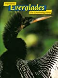 img - for in Pictures Everglades: The Continuing Story book / textbook / text book