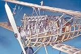 木製模型飛行機キット モデルエアウェイ MA1001 アルバトロス D. Va  和訳付属