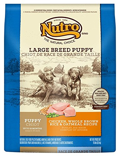 nutro-weight-management-chicken-brown-rice-oatmeal-large-breed-puppy-food-15lbs