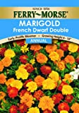 Ferry Morse French Marigold Double Dwarf Seeds