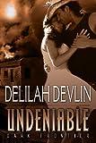 Undeniable: Dark Frontier, Book 1