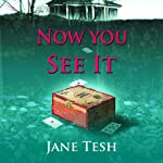 Now You See It: A Grace Street Mysteries, Book 3 (       UNABRIDGED) by Jane Tesh Narrated by Jim Meskimen