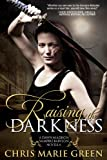img - for Raising the Darkness (A Dawn Madison Novella Book 1) book / textbook / text book