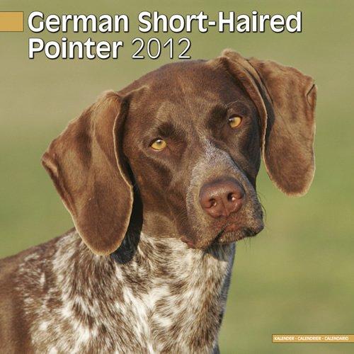 German Short-Haired Pointer 2012 Calendar 10040-12