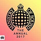 Ministry of Sound: The Annual 2017