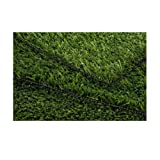 PETaPOTTY Original Synthetic Grass ~ PETaPOTTY Grass