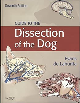 textbook of veterinary anatomy dyce pdf download