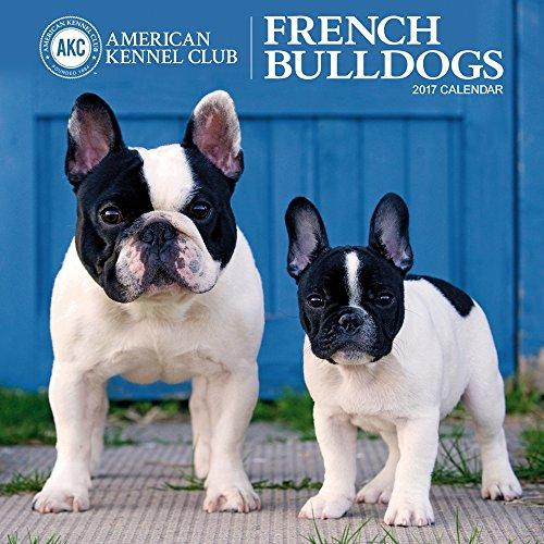 French Bulldogs 2017 American Kennel Club Wall Calendar (French Bulldog Puppies Calendar compare prices)