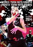 Depeche Mode Kalender 2014 - Broschiert