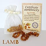Best Baltic Amber Teething Necklace For Baby (Honey) - Alternative To Teething Toys - Certificate Of Authenticity Included. Lifetime No-Hassle 100% Satisfaction Guarantee