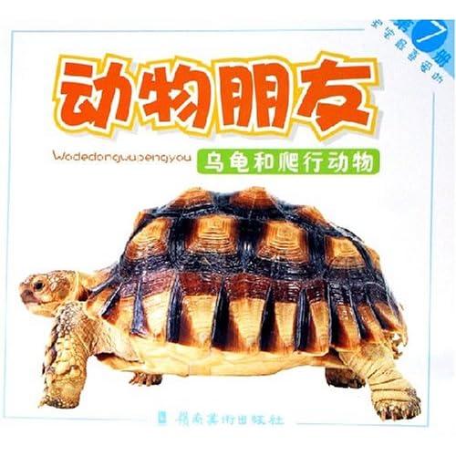 宝宝最喜爱的动物朋友:乌龟和爬行动物