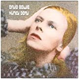 Hunky Dory