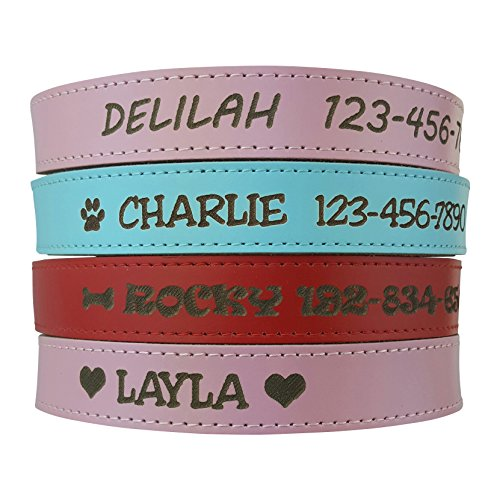 Personalized Dog Collar - Engraved Soft Leather in Small, Medium or Large Size, Pink or Red ID Collar No Pet Tags or Embroidered Names (Pet Collar Custom compare prices)