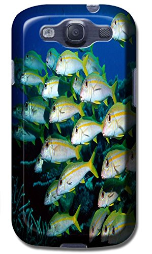 Top Quality Phone Accessories Under Sea World Beautiful Colorful Fishs Clean Water Special Design Cell Phone Cases Covers For Samsung Galaxy S3 I9300 No.13