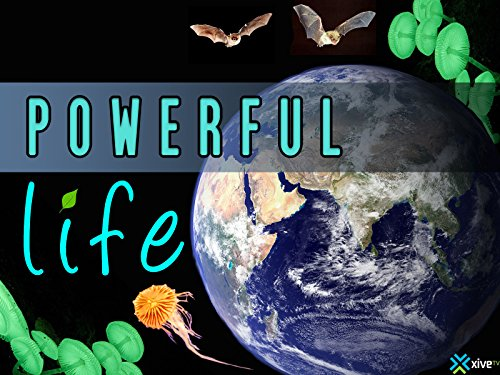 Powerful Life: Season 1