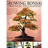 "Growing Bonsai: A Practical Encyclopediavon ""Ken Norman"""